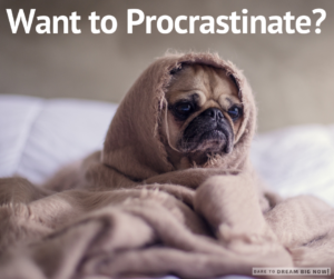 Want to Procrastinate?